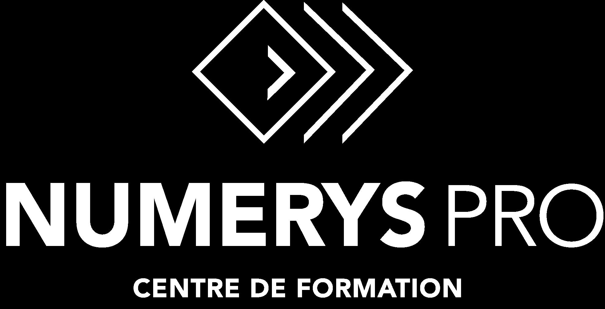 logo Numerys Pro